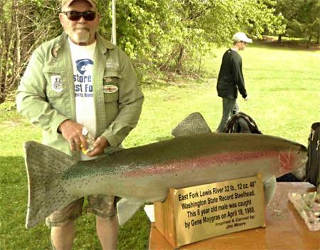 WA State Record 32 Lb. Steelhead